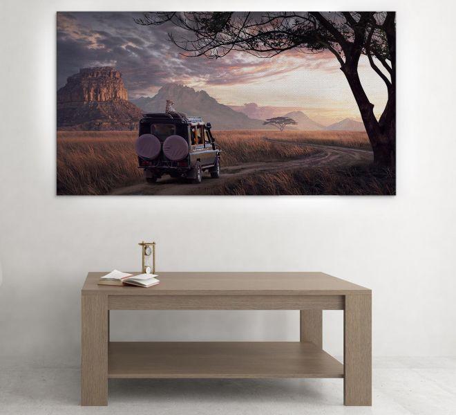 Savana-Bratcovici-Radu-frame-picture