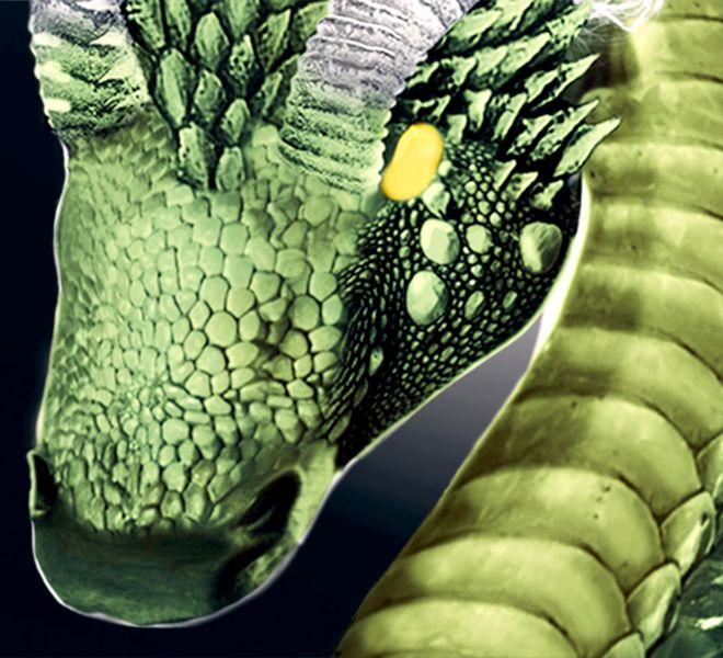 The-Green-Dragon-Bratcovici-Radu-detail-1