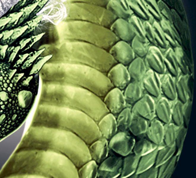 The-Green-Dragon-Bratcovici-Radu-detail-2
