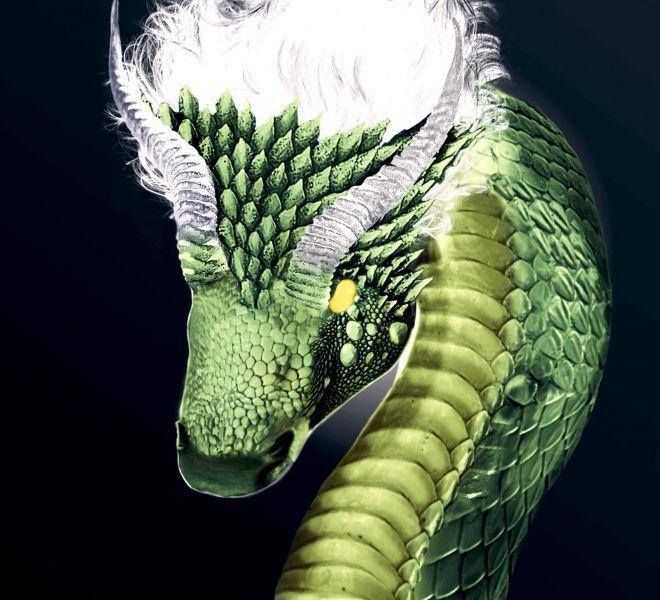 The-Green-Dragon-Bratcovici-Radu