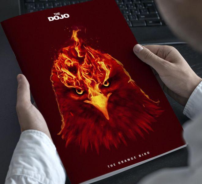The-Orange-Bird-Bratcovici-Radu-brochure