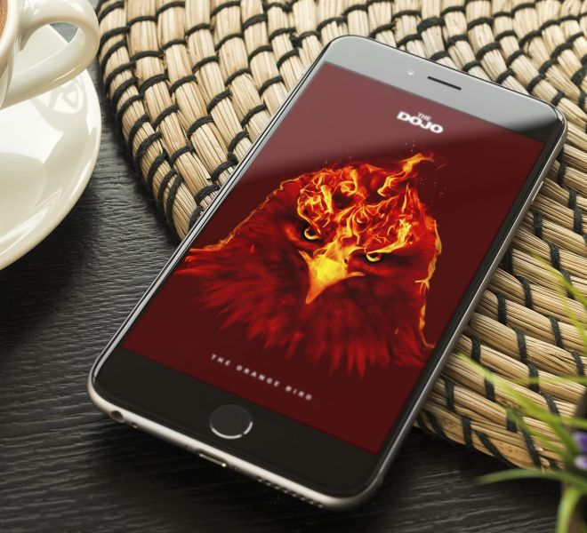 The-Orange-Bird-Bratcovici-Radu-iphone